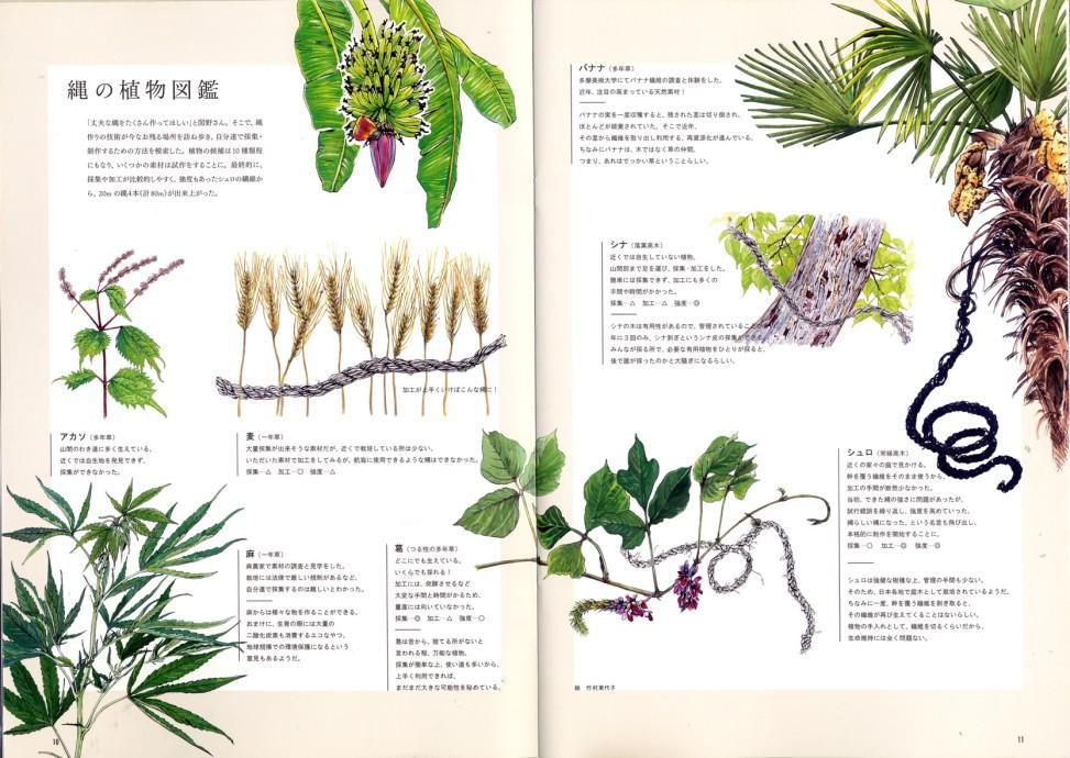 th_植物ページ